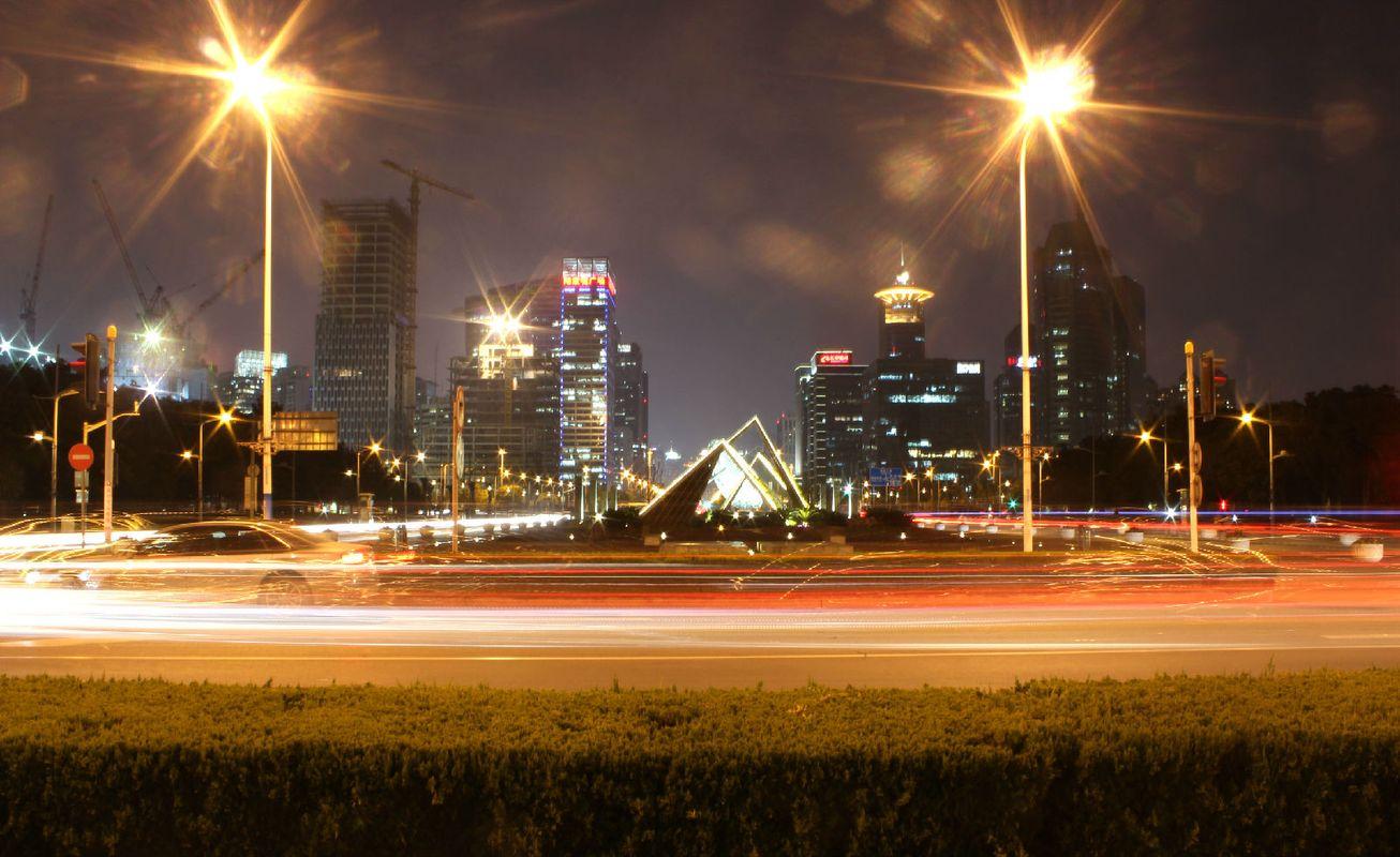 上海世纪公园梅花节