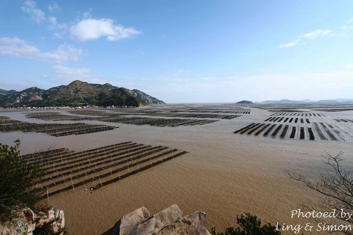 滩涂上万根竹竿插成一块块方形的网框,由远及近,绵延数十里,蔚为大观