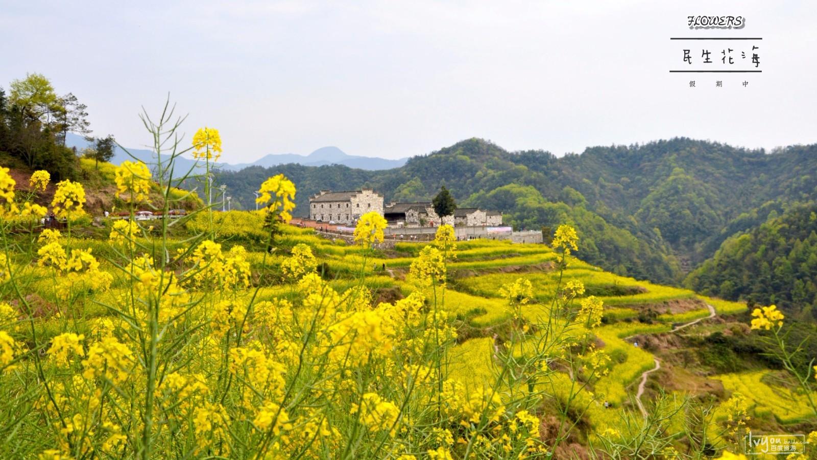 浦江县旅游攻略图片5