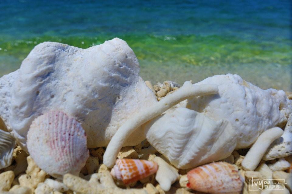 南海奇域,大美西沙_西沙群岛旅游攻略_百度旅游