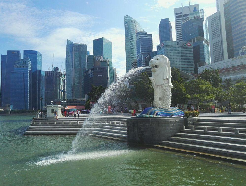新加坡:鱼尾狮图片