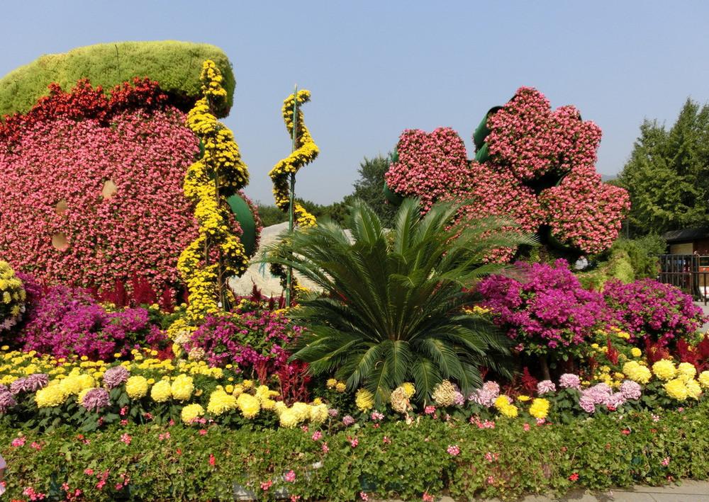 植物园的大门~图片