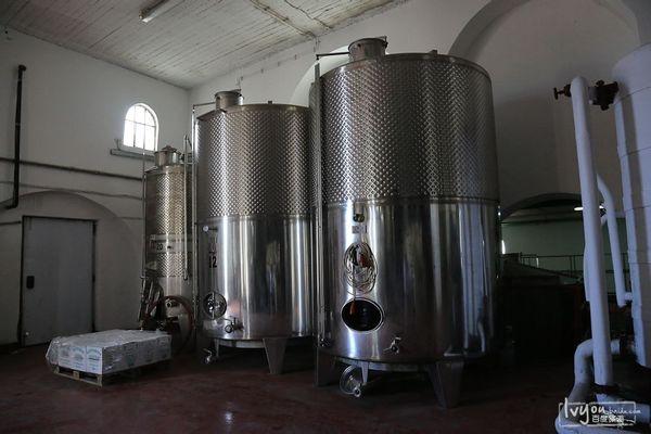 葡萄酒酿造过程,发酵图片