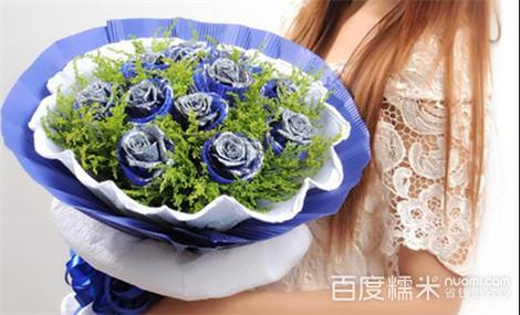 雪绒花视频妖姬黄蓝色樱草附近景区图片