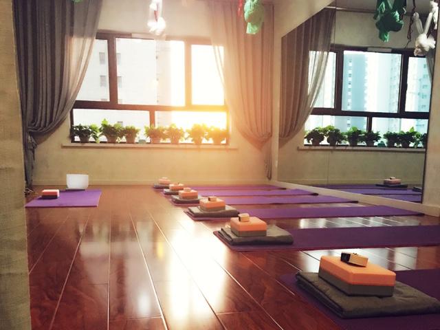 菩提树瑜伽私教会所