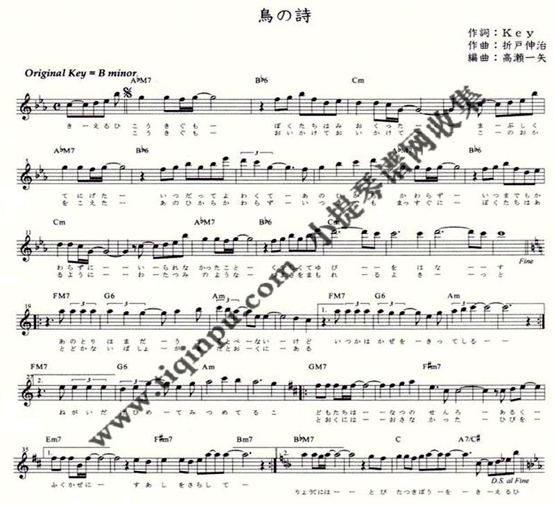 跪求鸟之诗小提琴谱子.
