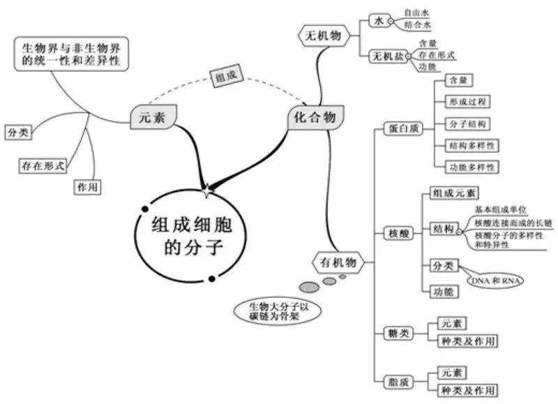 高一生物必修一每一章的知识框架 就像树状图样 谢谢老啊!图片