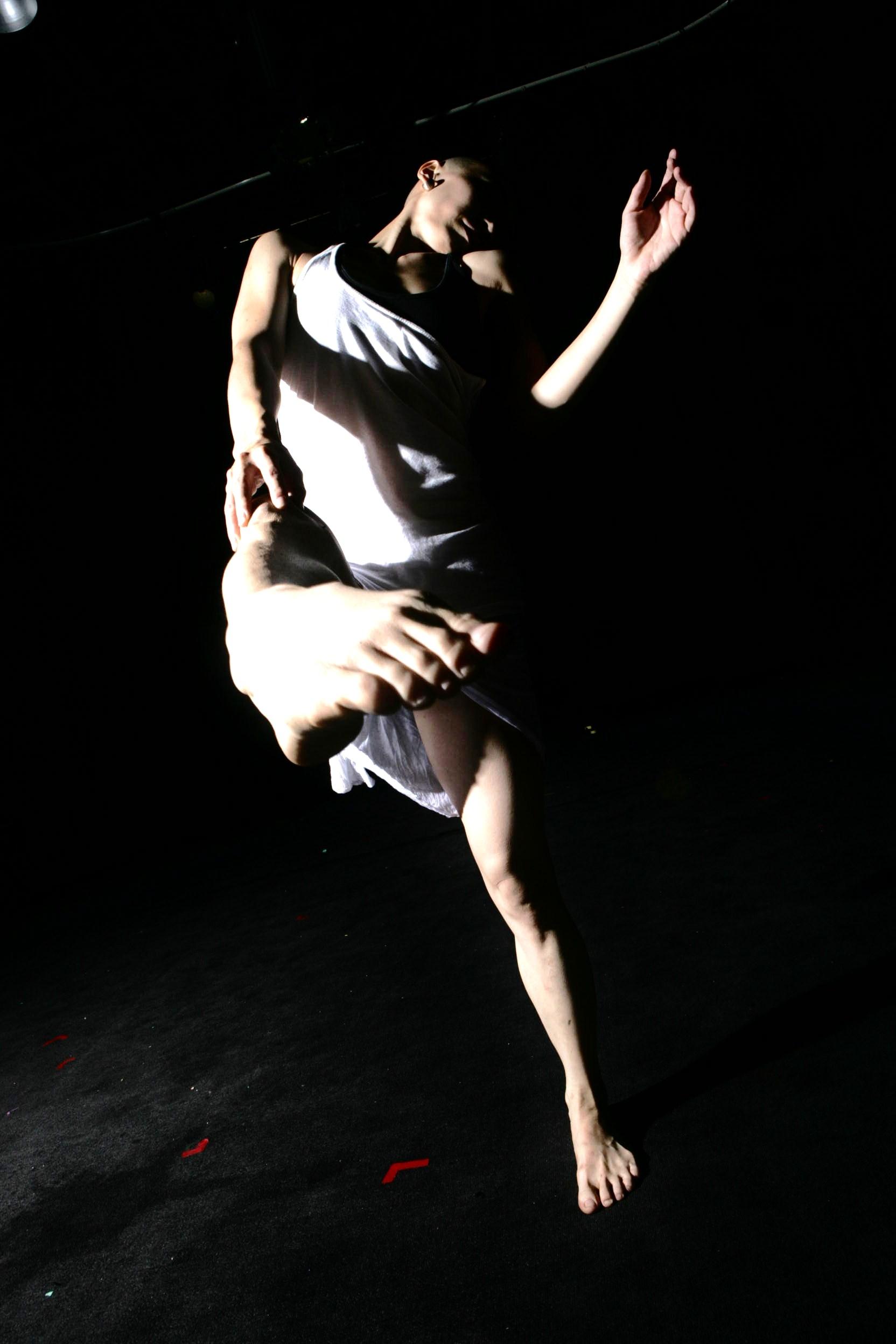 舞蹈艺术囹�a_段妮的作品