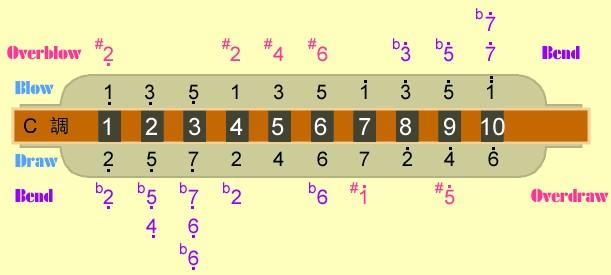 十孔,22孔和24孔的音阶图我都有,不知道你的是哪种.图片
