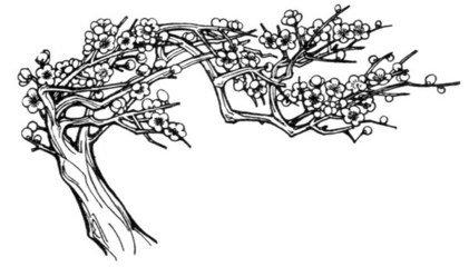 全景桃树怎么画简笔画