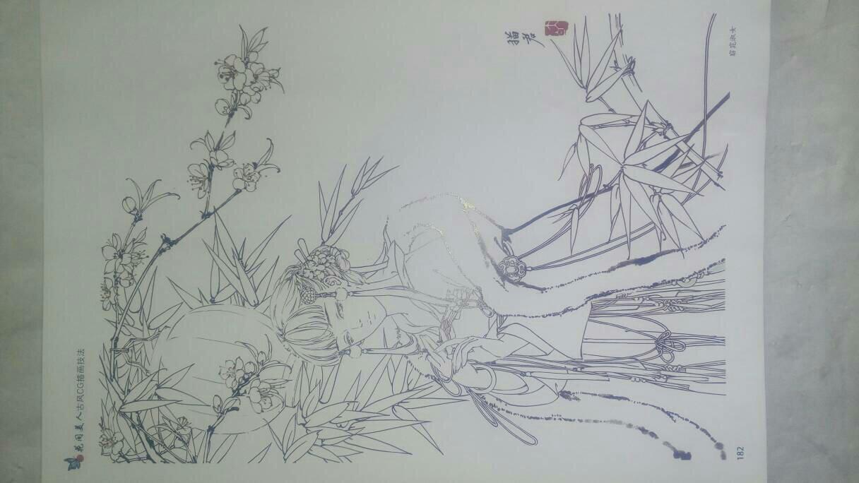 求一些线条简单清晰适合临摹的古风手绘线稿,如下