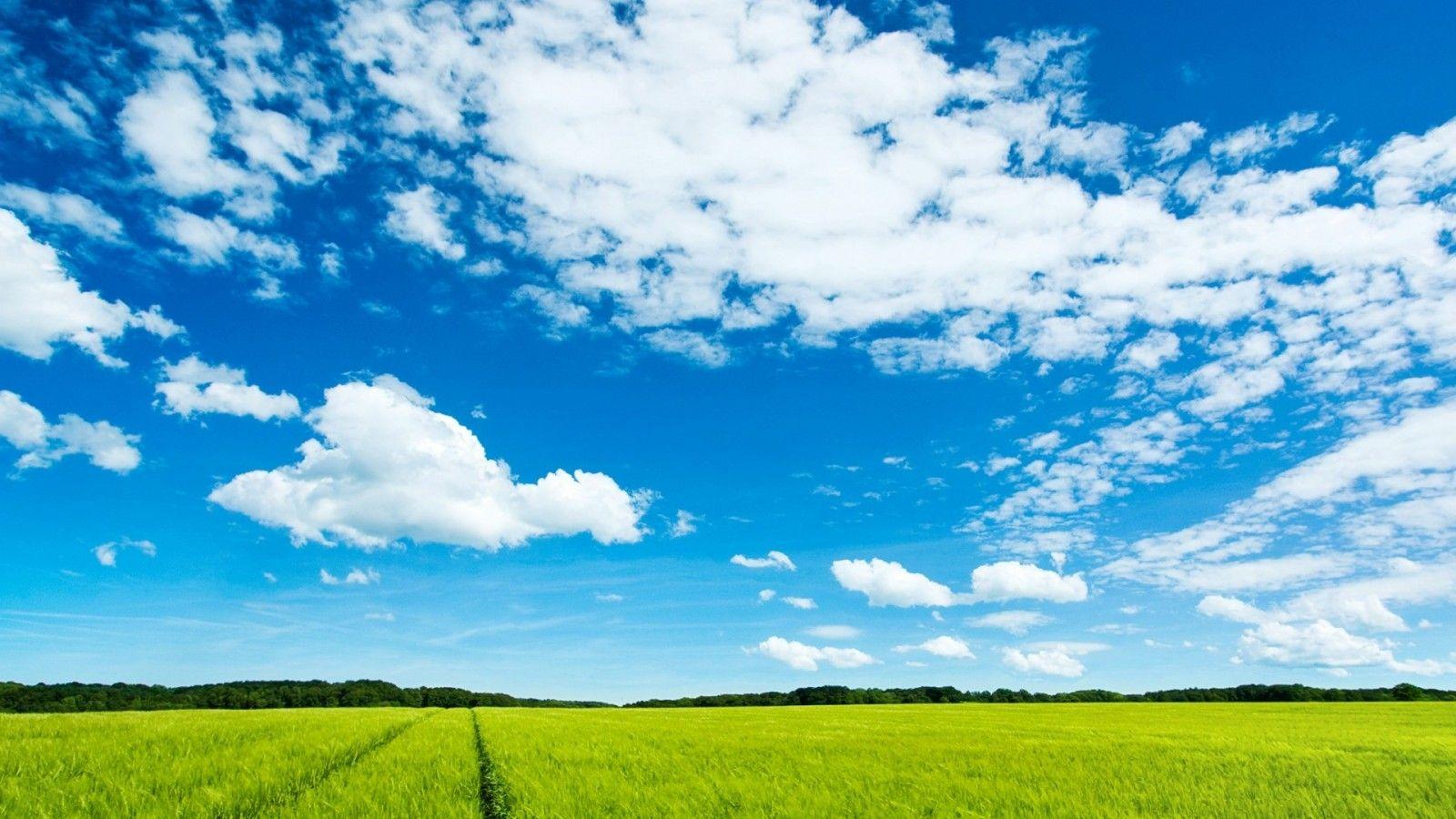 背景 壁纸 草原 风景 天空 桌面 1600_900图片