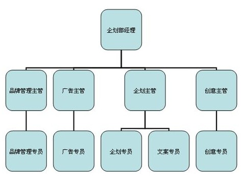 公司的组织结构如何划分