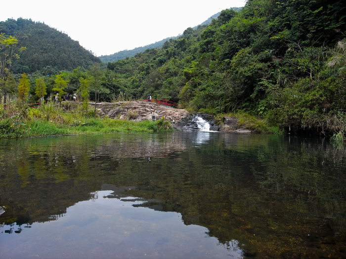 求原拍深圳三洲田国家森林公园照片图片