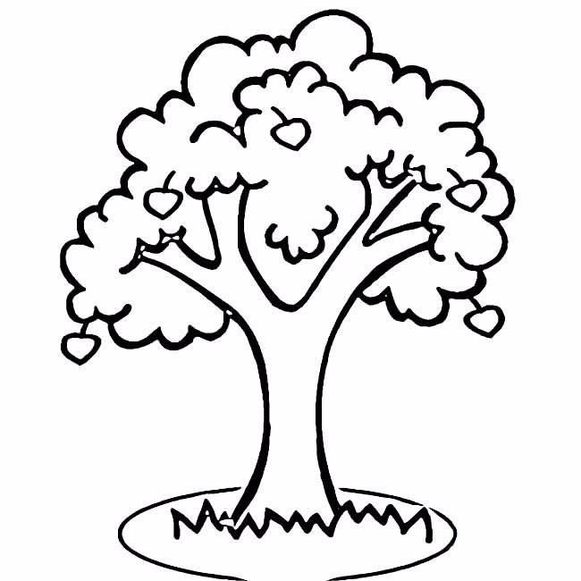 简单的大树简笔画 怎么画出路边的大树