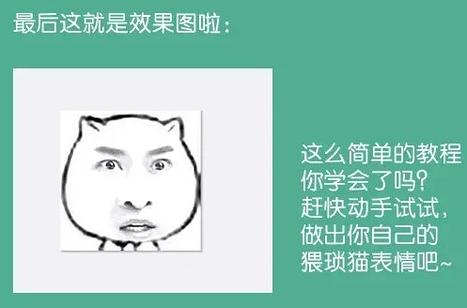 怎么制作猥琐猫表情?图片