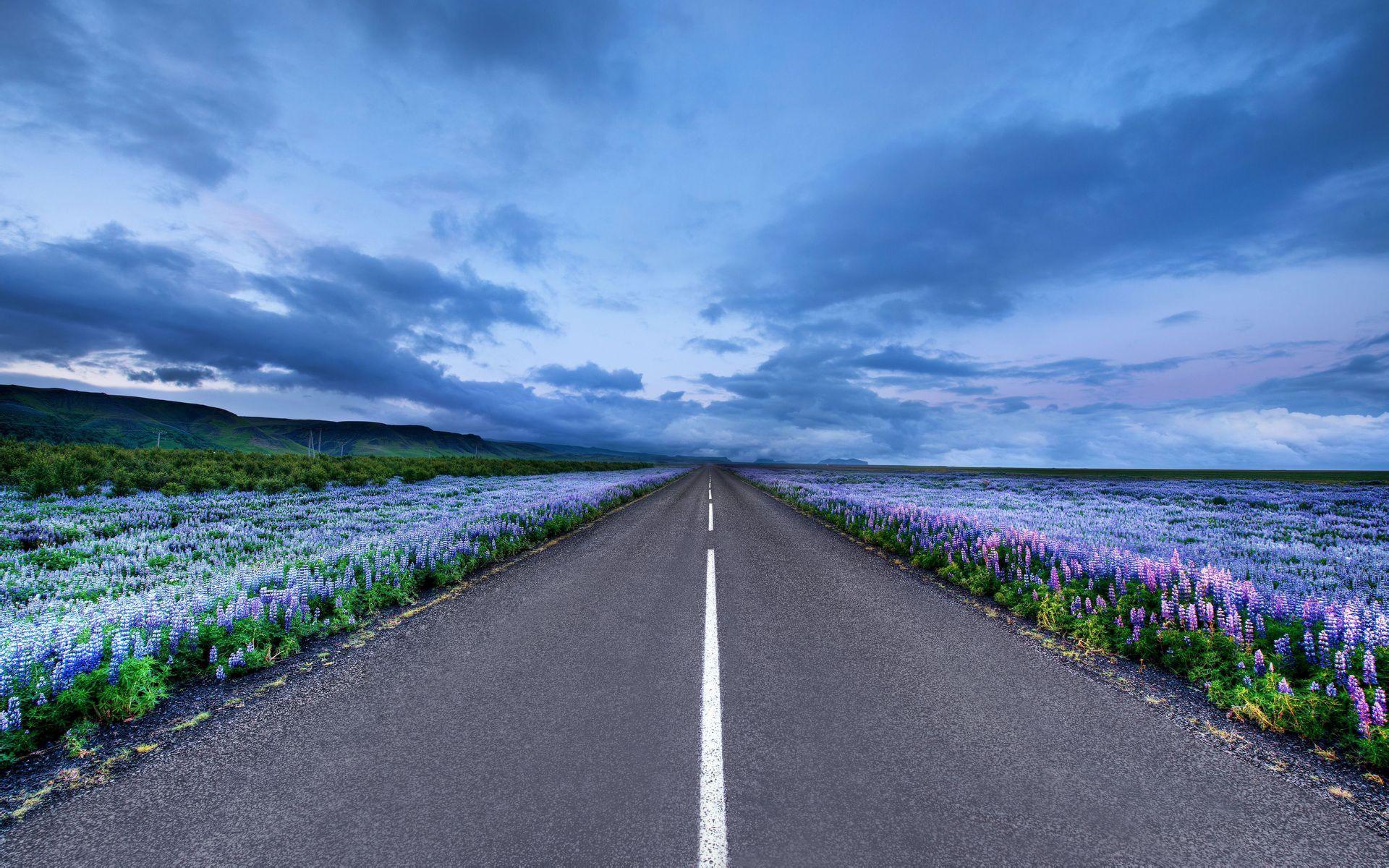 发几个超清壁纸,类似这种公路延伸的,几m都无所谓图片
