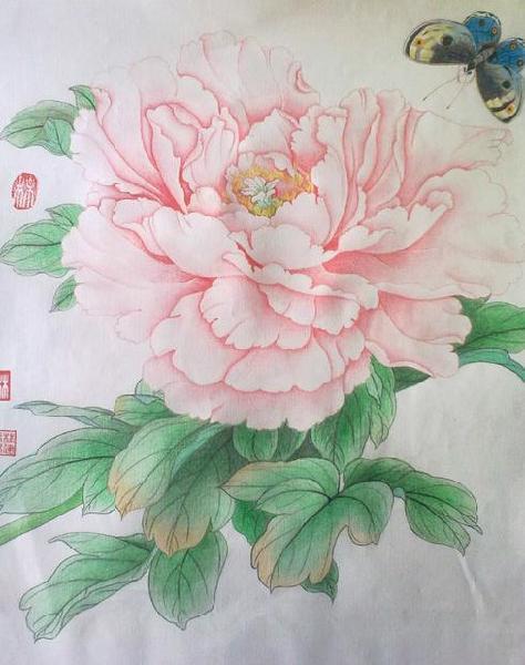 求牡丹花的手绘图,其他花也行,要彩铅手绘的淡雅的,不