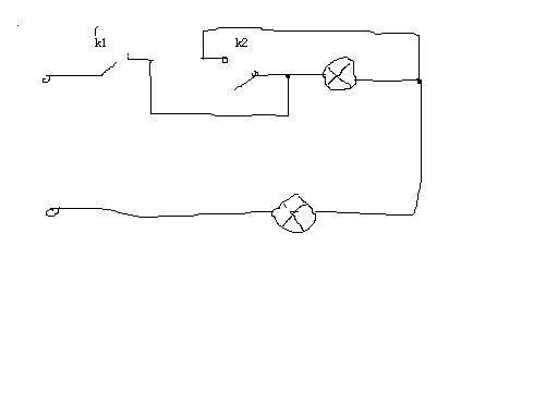 电路:2个灯泡,2个开关