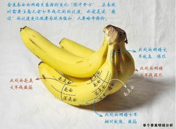 素描水果结构该怎样画?