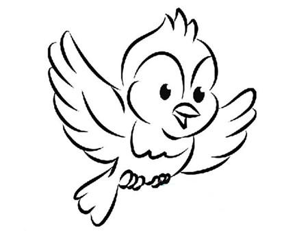 飞的小鸟怎么画简笔画