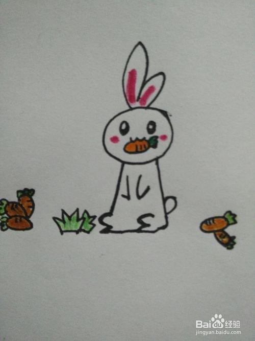 怎样画水彩兔子zhipn