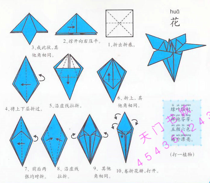 怎样折纸百合?