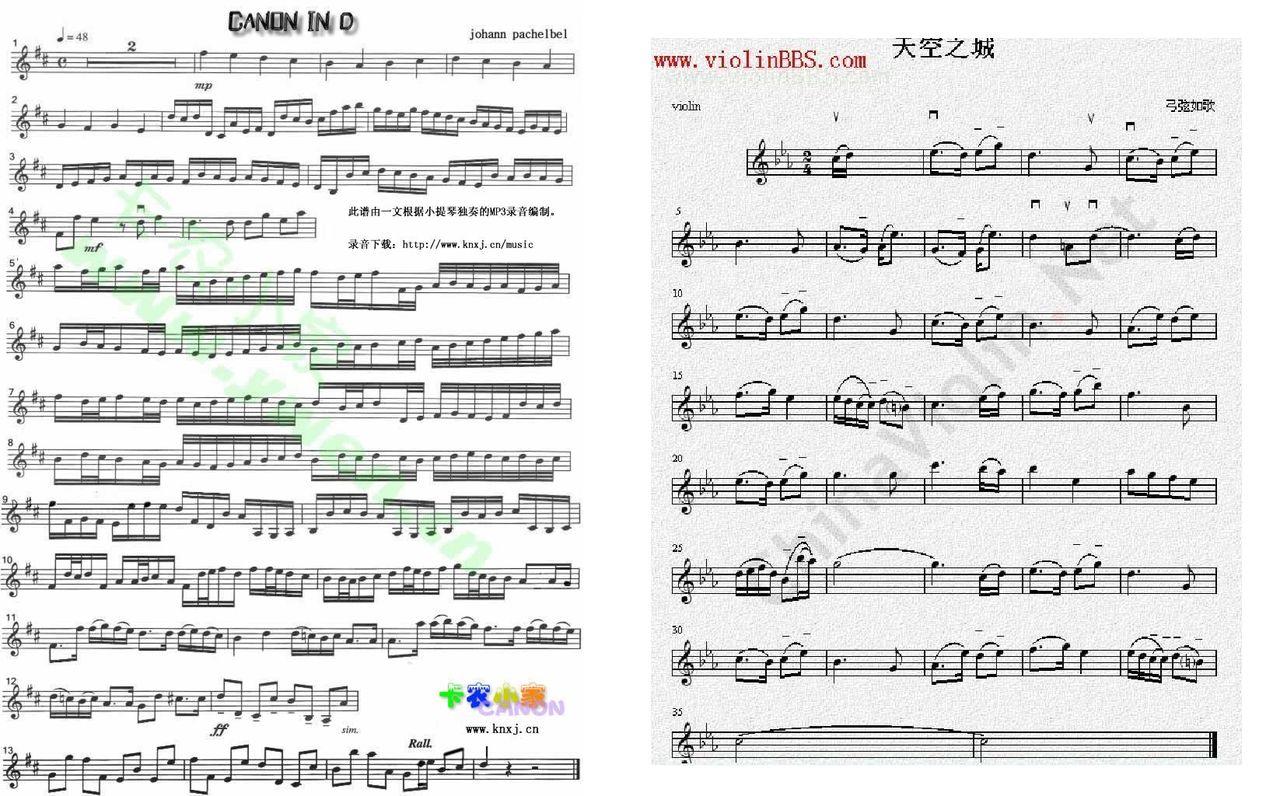 请问谁有《天空之城》和《卡农》的钢琴谱和电子琴谱