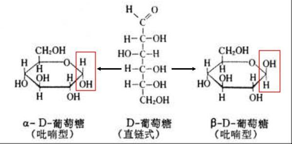 α-d-型葡萄糖的结构式