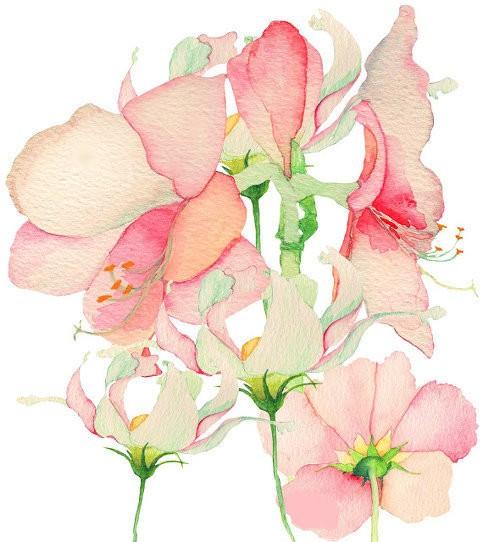 花朵矢量图片大全