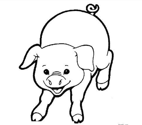 可爱猪的彩铅画