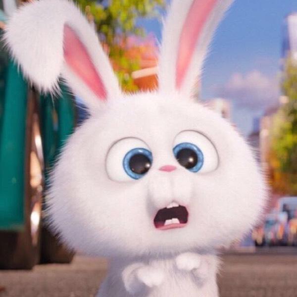知道,这只兔子是哪部动画片里边的?夜莺贝多芬图片