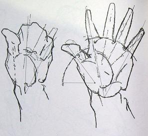 画画求技巧,人体比例问题太大,手也画得太渣 求教导