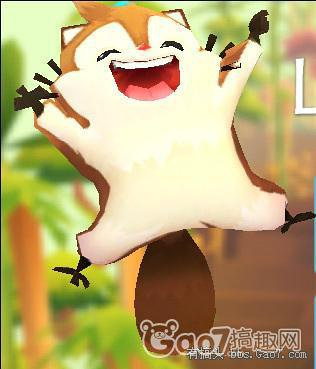 求大神讲解饲养小飞鼠的注意事项 尤其是柳树枝叶对于