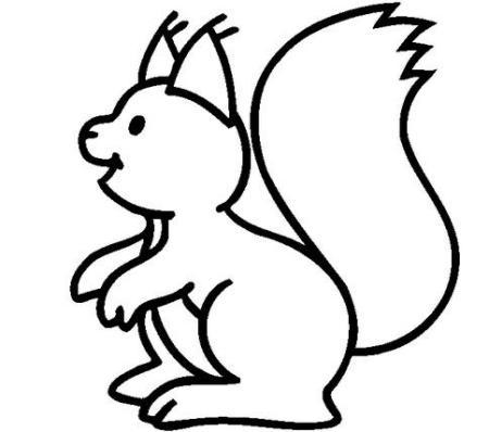 小松鼠怎么画图片