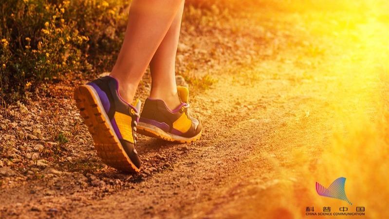 还在炫耀每天上万的步数?每天走得越多越好?的头图