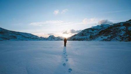 冰河上的贵公子王思聪:曾身家60亿,如今千万资产被冻结