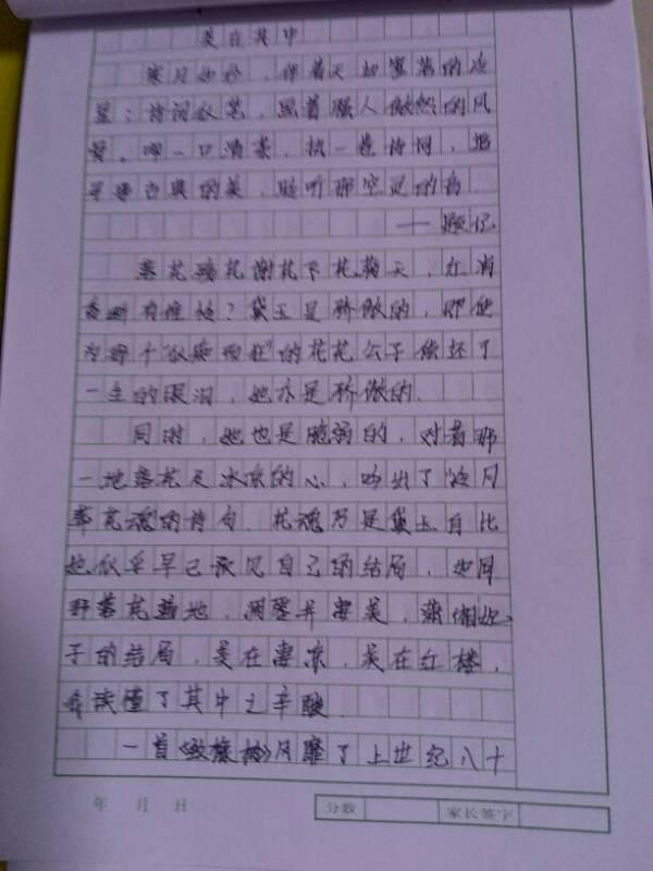 急求一篇初中,要求初三左右作文,600字以上,内容不限水准田家炳苏州市图片