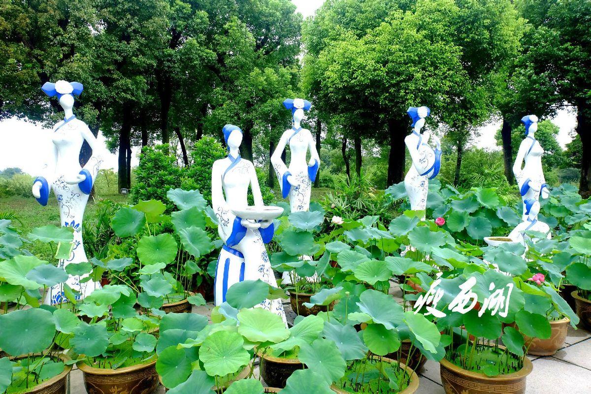 一组青花瓷雕像和盆栽荷花组成的小品.图片