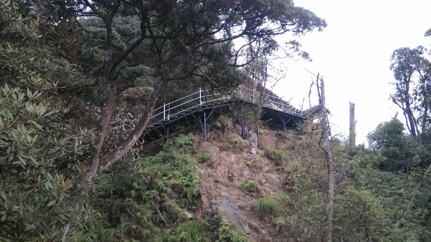 郴州 莽山国家森林公园 自驾 p