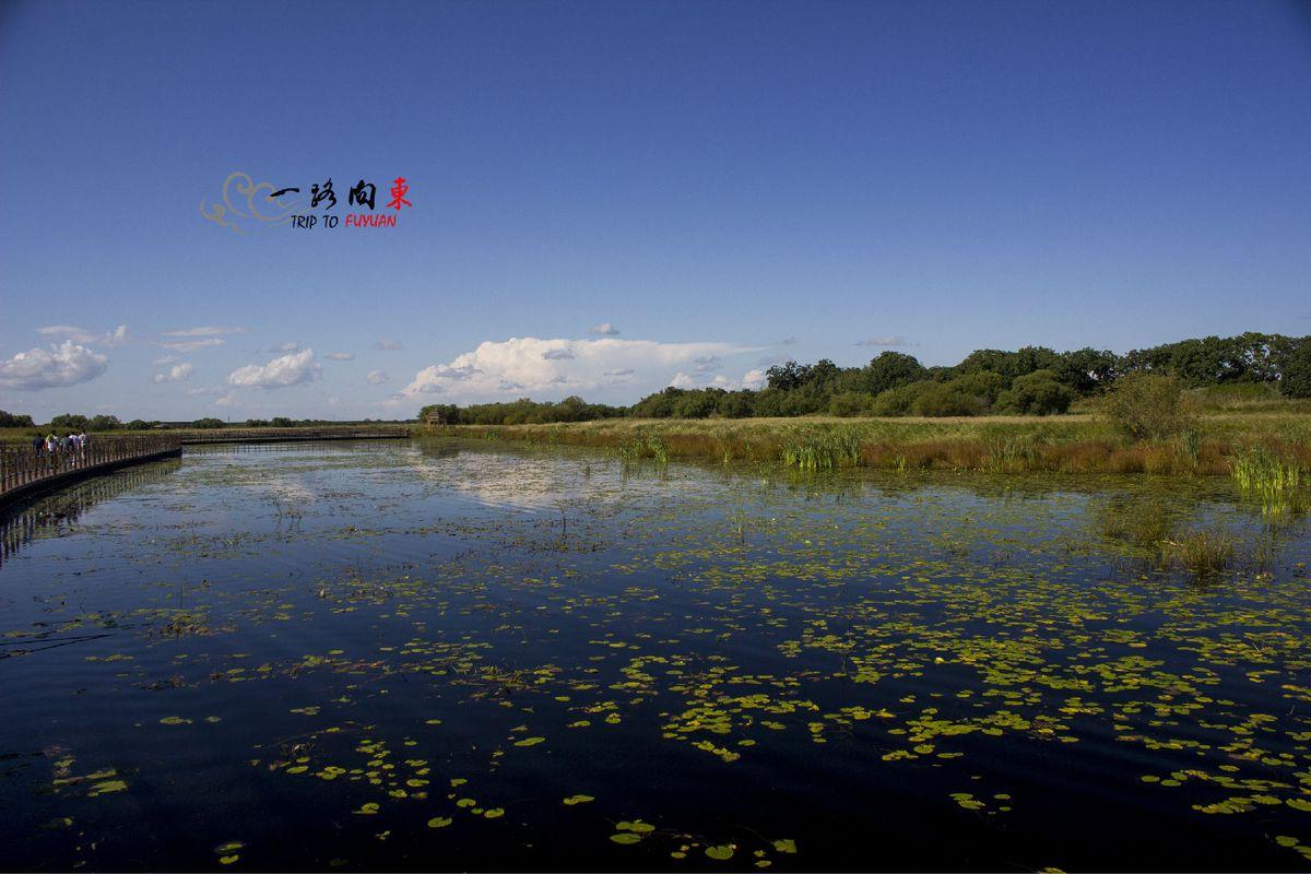 黑瞎子岛湿地公园图片