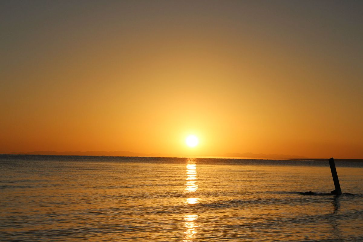 太阳升起了图片