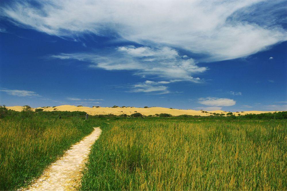 风景秀丽的小路