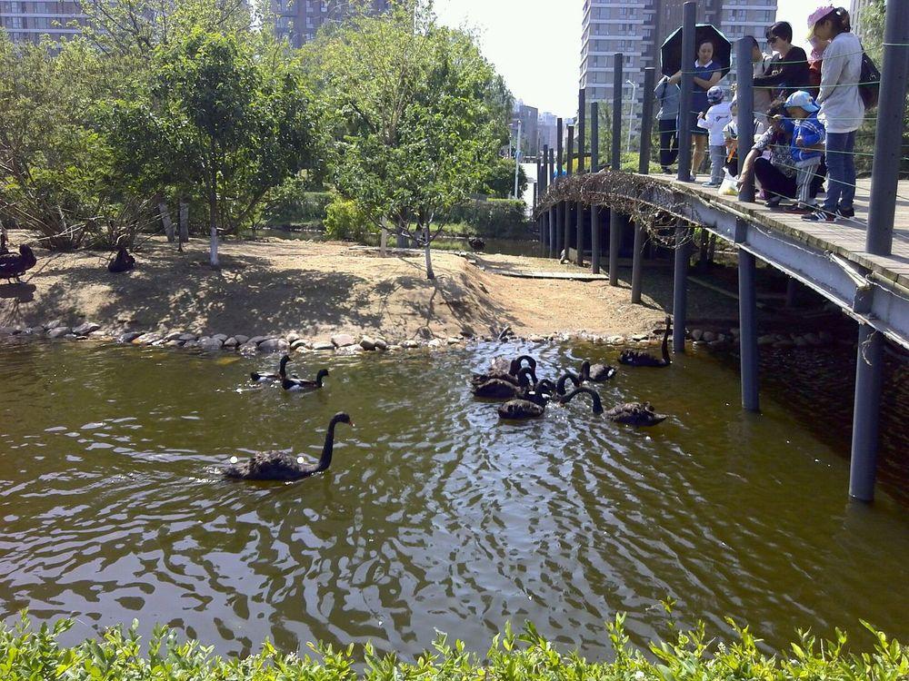 长白岛湿地公园