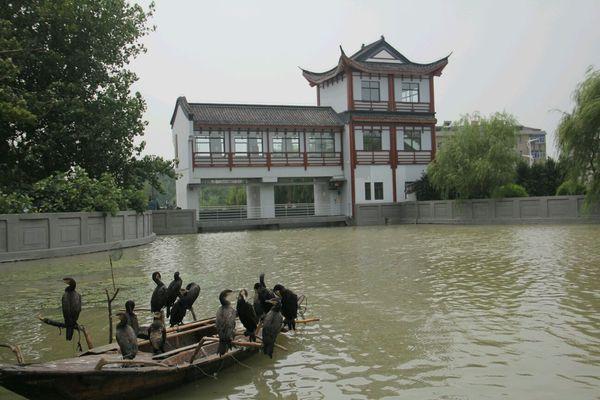 2014年8月江都邵伯镇江金山湖之旅