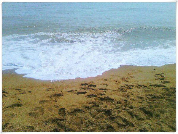 澎湃的大海图片