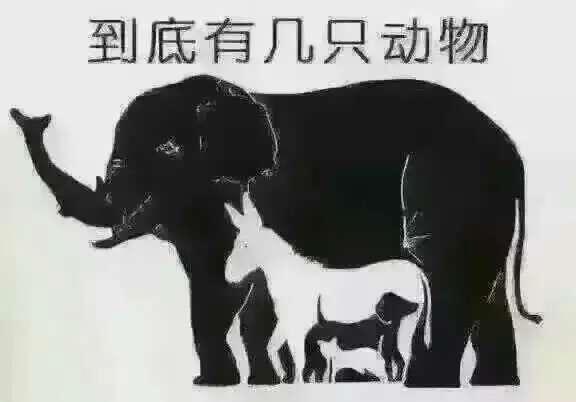 图中有多少只动物?