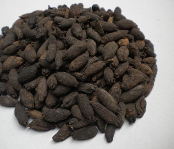 中药是一味古老的钉子,由于其香味像丁香,有强烈的形状而得此名.上海三林丁香苑图片