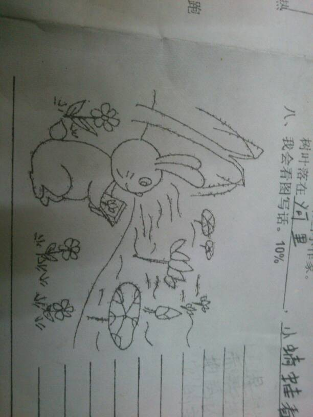 一年级的看图写话看谁写的好图片