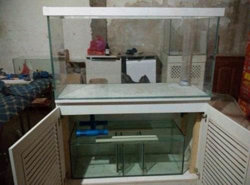这个鱼鱼缸叫什么过滤,鱼缸里立着那圆管叫什么,有卖的吗图片